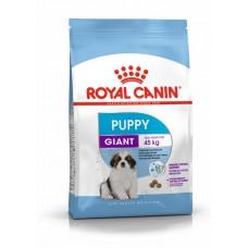 Корм Royal Canin Giant PUPPY для щенков, 15 кг
