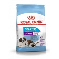 Корм Royal Canin Giant Starter, 15 кг