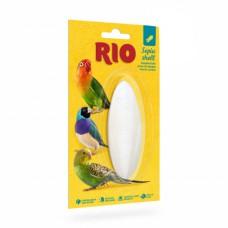 RIO, кость сепии